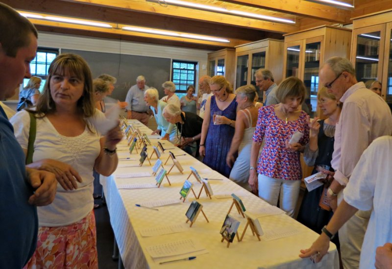 Silent Auction of Minis for Morrill