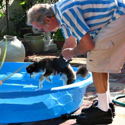 Bob and Doggie Rocco