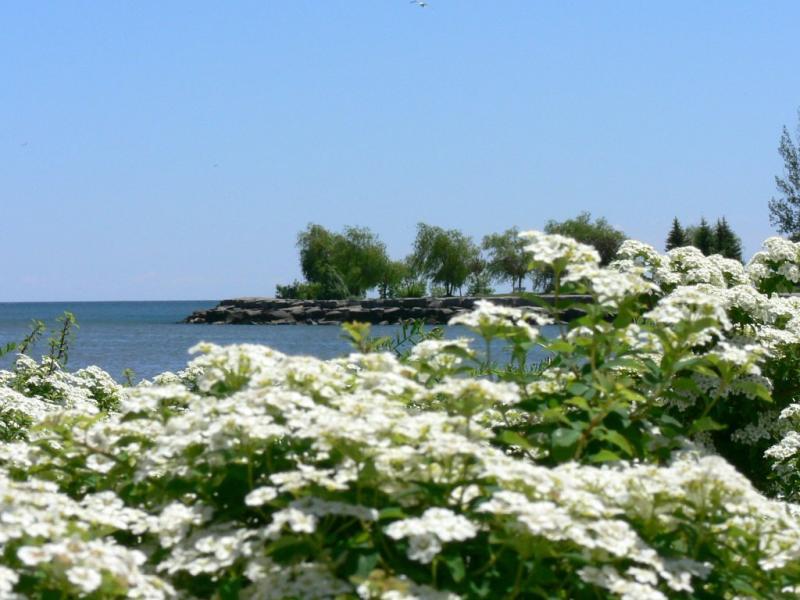 Spring at the marina....