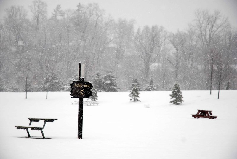 At the park in a winters snow storm