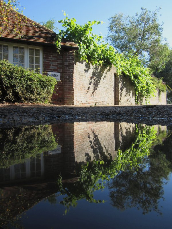 Cottage  reflections