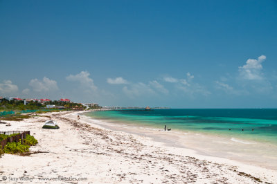 Puerto Morelos after the storm