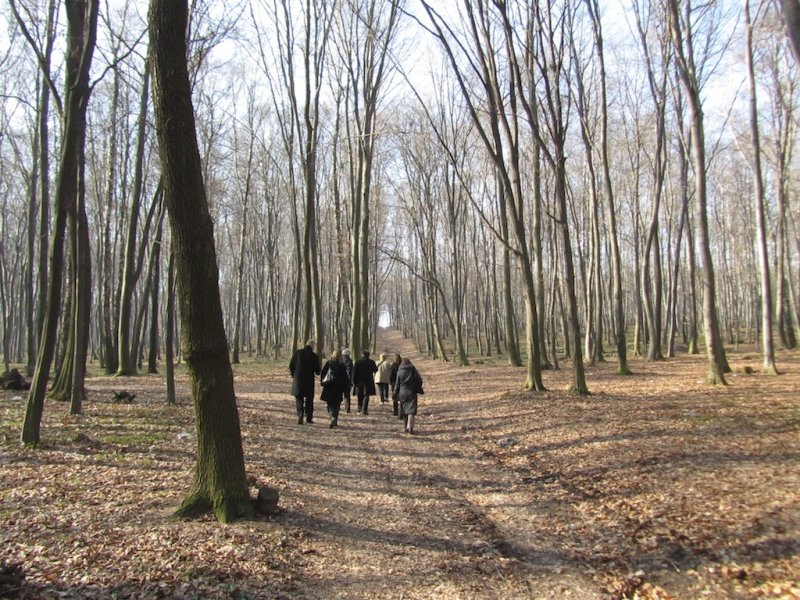 the Yahad team and guests head off into the woods