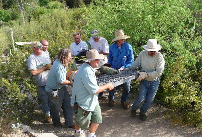 Teamwork at Boyce Thompson Arboretum