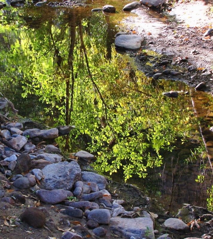 Queen Creek Reflections