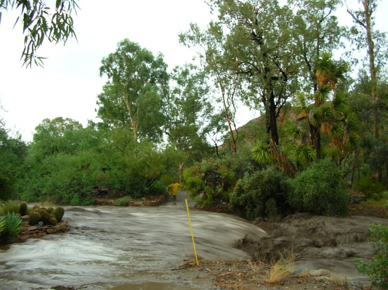 SE corner of the Chihuahuan terraces is almost underwater