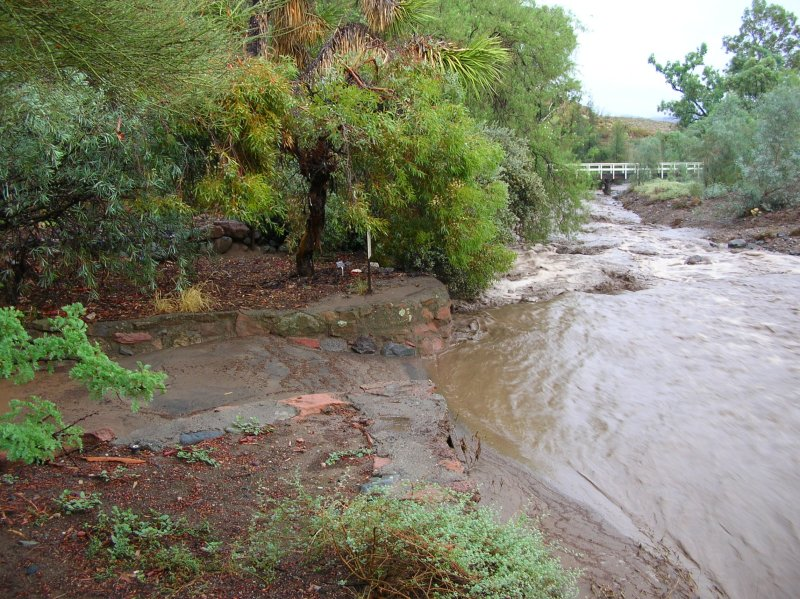 Thick Mud Covering the Main Trail at the East side of Silver King Crossing