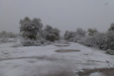 Snow scene near Oak Flat Campground