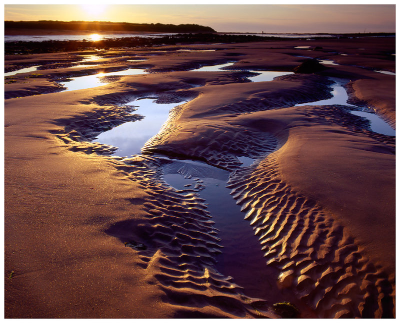 Cambo Sands Tide Pools 2