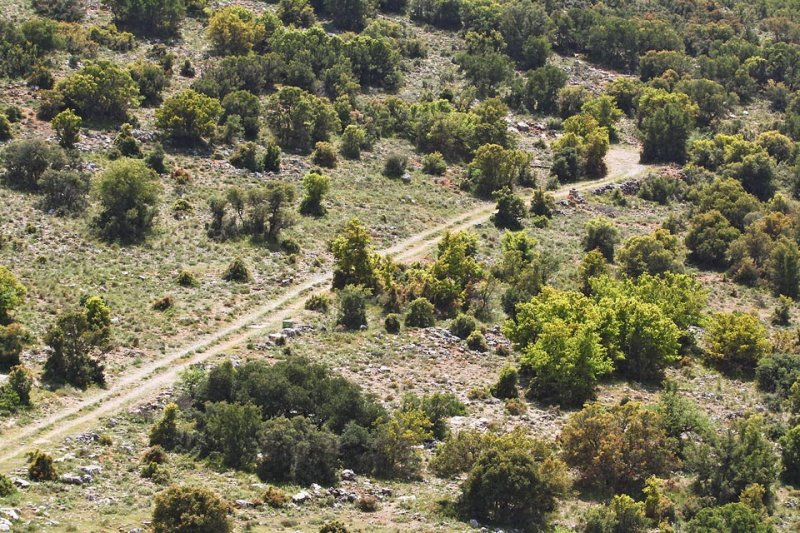 sparse mountain landscape