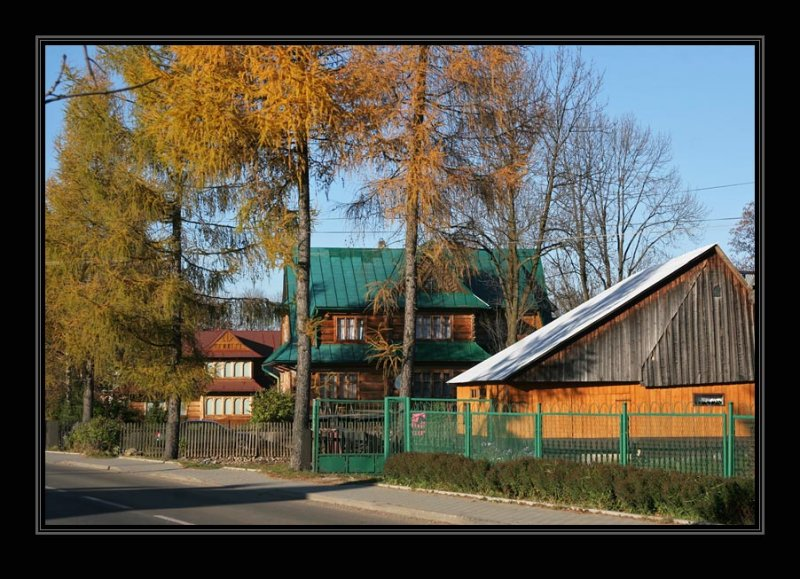 Witov
