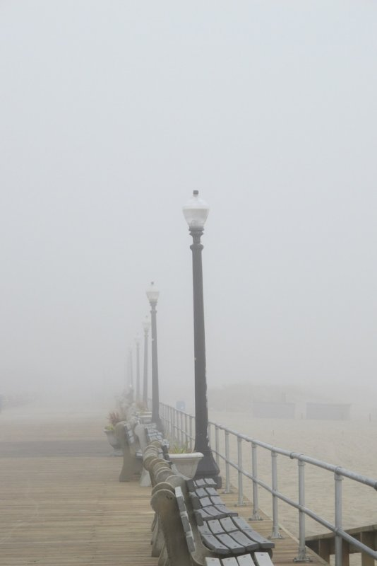 foggy benches 730.jpg