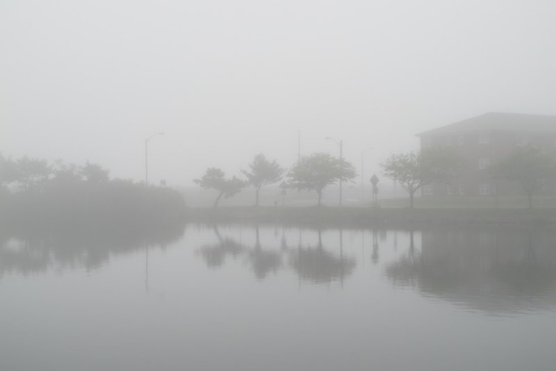 foggy morning 728.jpg