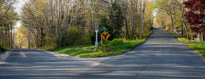 pbase a fork in the middle  of the road day April 28 2012_.jpg