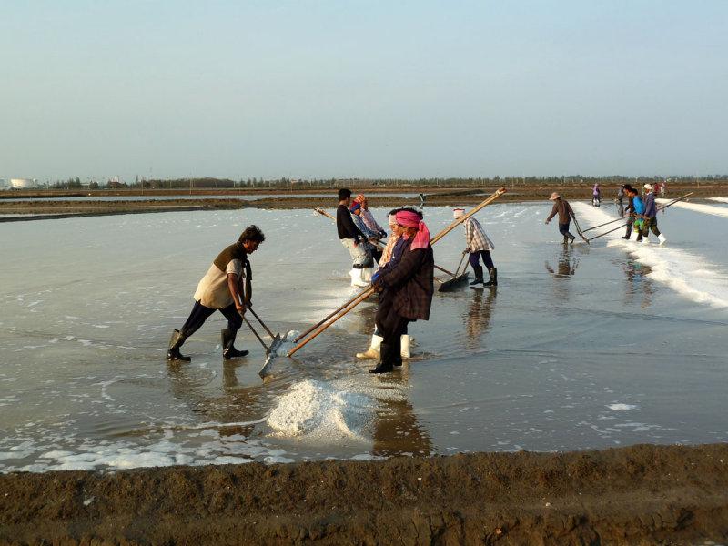Harvesting salt-early steps