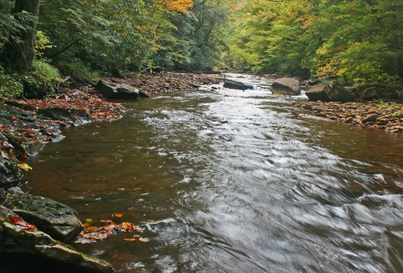 Upstream North Fork Cherry Few Colors tb0911tlx.jpg