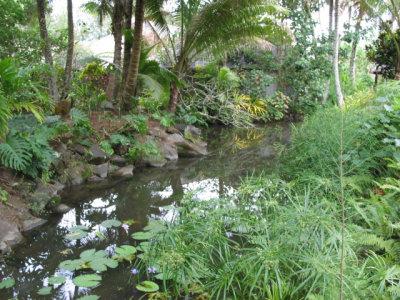 Pacific Resort 049.jpg