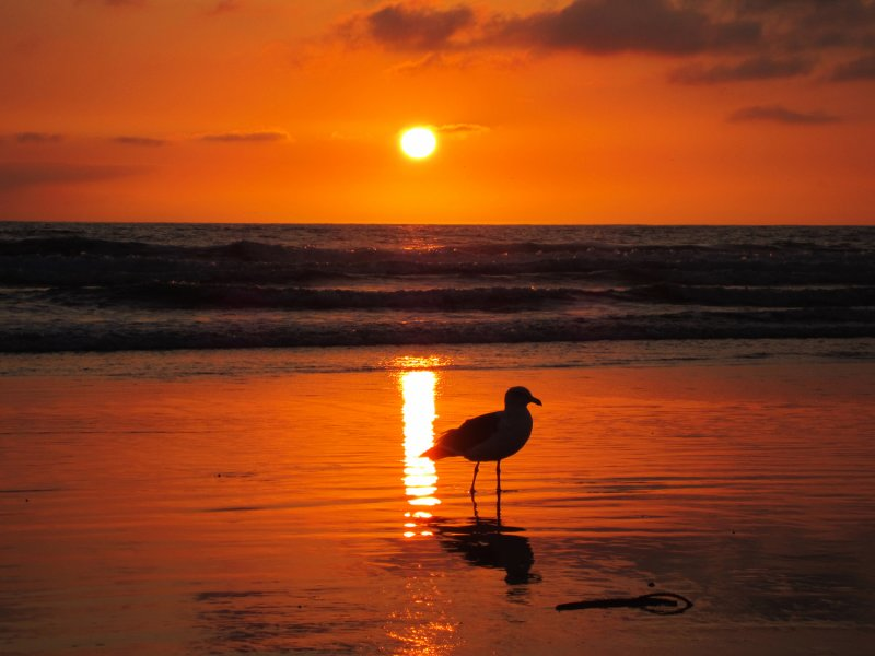 Sunset0604