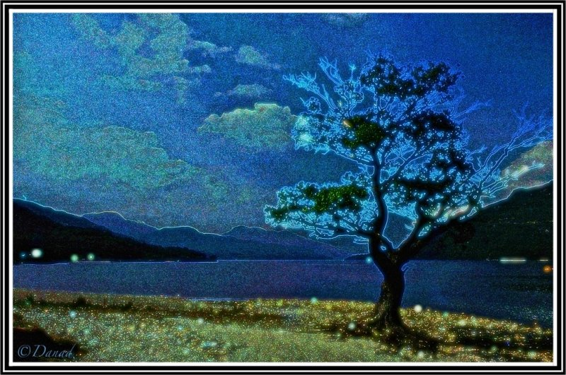 The Living Tree.