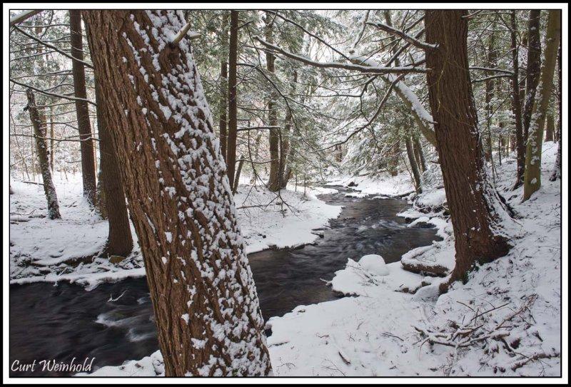 Dingman Run snowfall 2