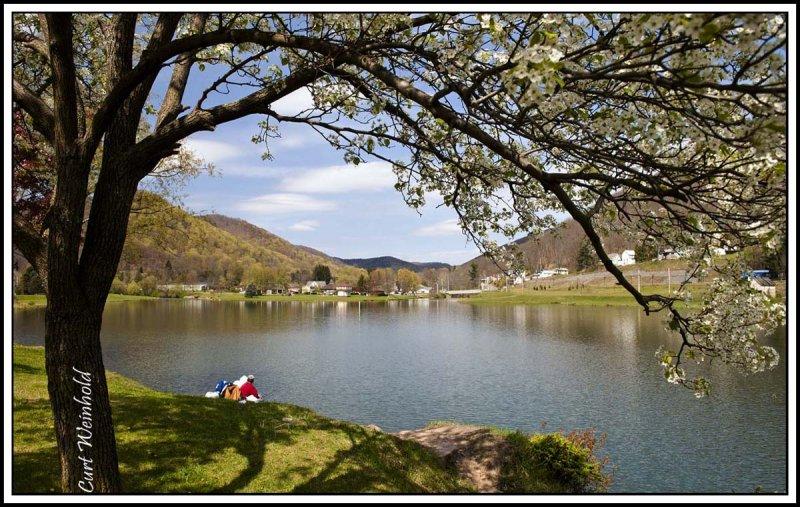 Galeton blossums at Berger Lake