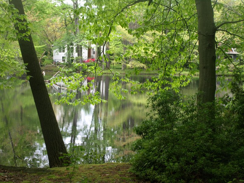 Bailey Arboretum on Long Island