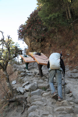 Porters carrying plywood