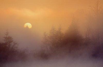 Foggy Sunrise 09276
