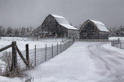 Barns In Snowfall 20111228
