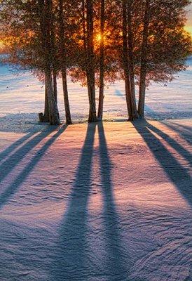 Sunrise Shadows 20120123