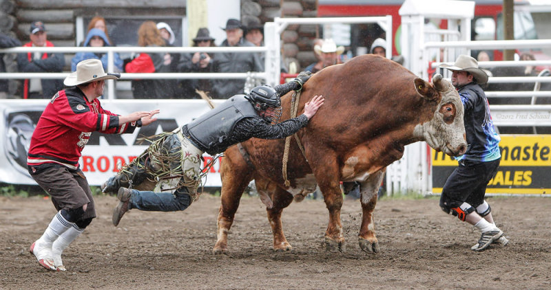 Stuck to a Raging Bull