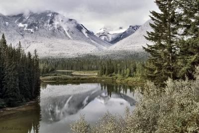 Bow Valley Parkway II