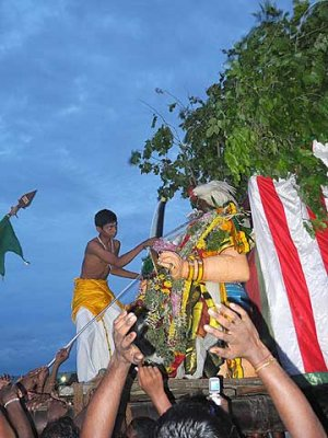 With the symbolic killing of the cock the  demon is finally completely defeated. Skanda Sashti at Tiruchendur.