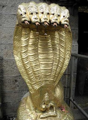 Golden nagas at the entrance of Nagaraja Temple at Nagercoil, Tamil Nadu. http://www.blurb.com/books/3782738