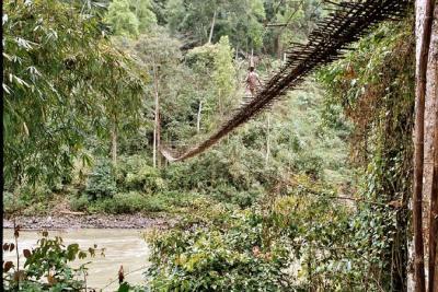 Suspension bridge across Subansiri river