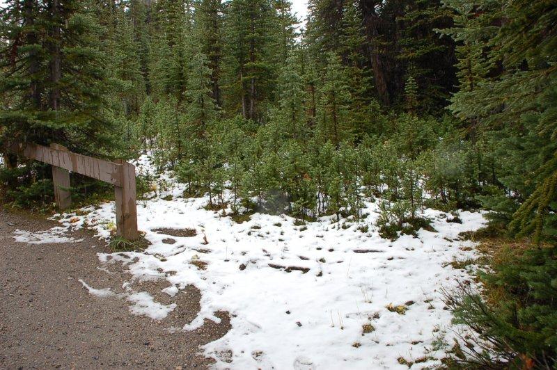 Snow rain in Parker Ridge