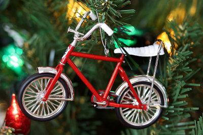 I got a new bike for Christmas!!!