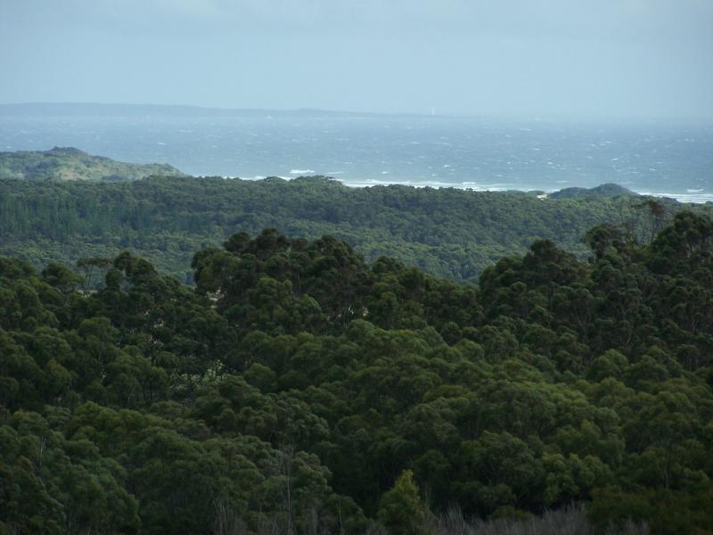 tasmania day 6 003.jpg