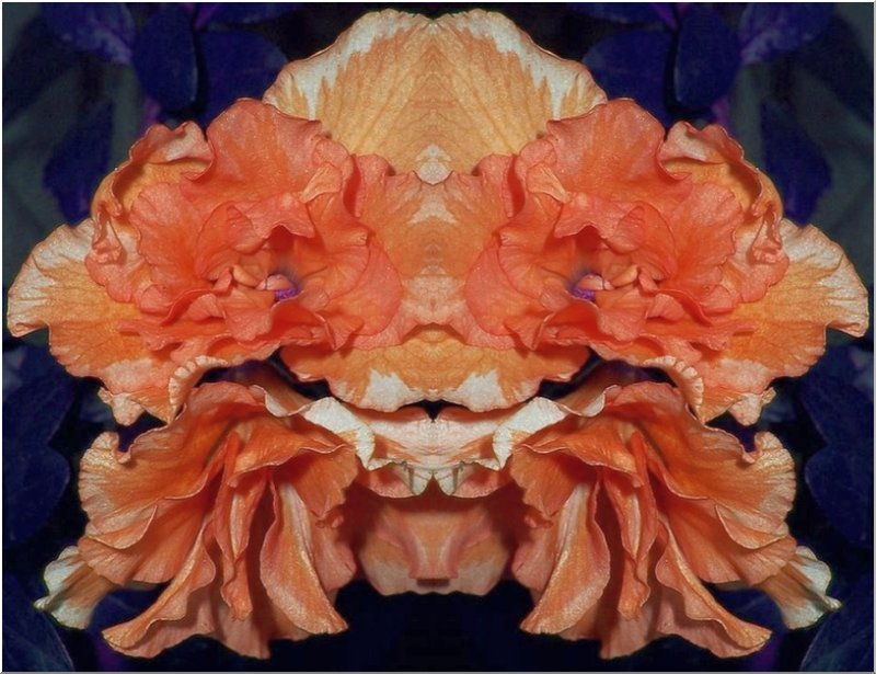Azalea Mask