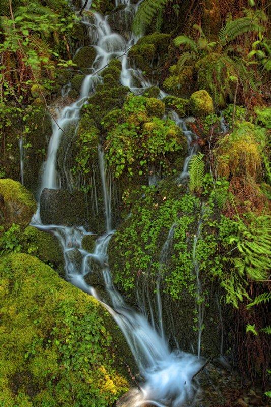 Falls - Near Brookings, Oregon