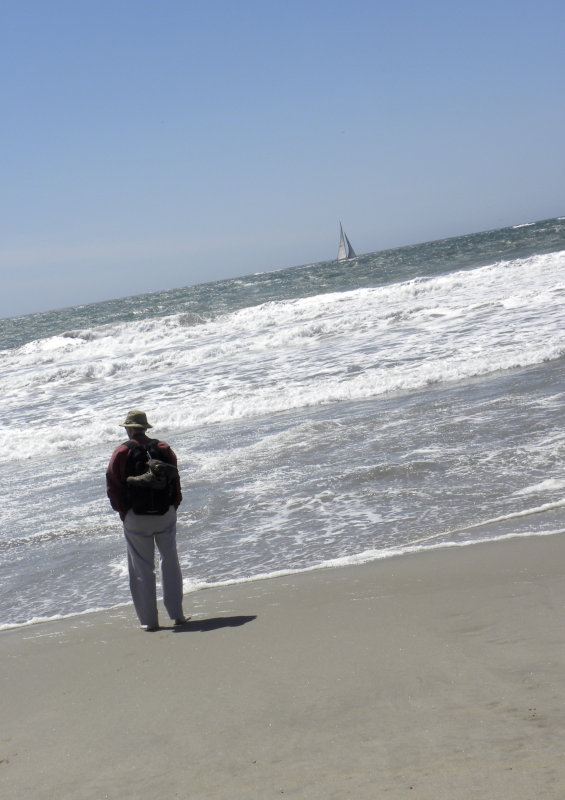 Mike & The Pacific