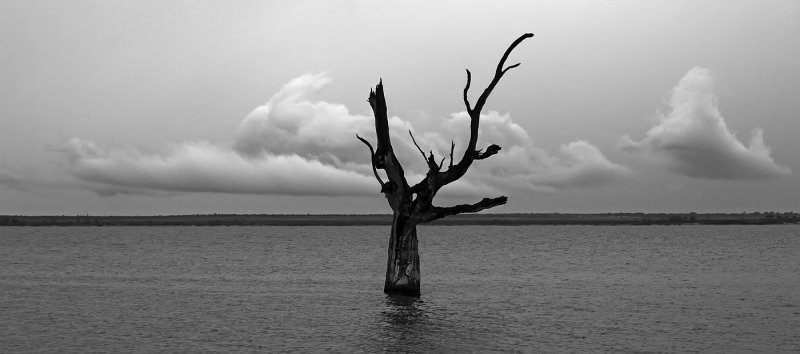 A Gray Day at Lake Bonney