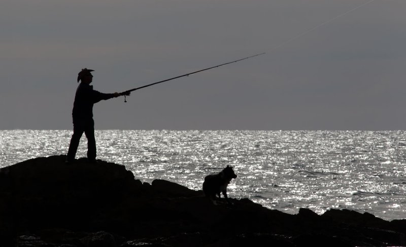 The Fisherman and His Best Friend