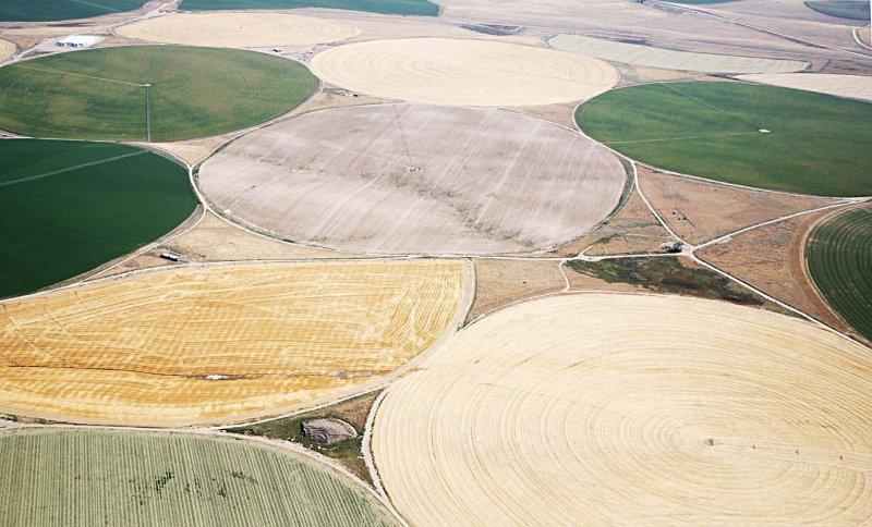 Washington State: Crop circles?