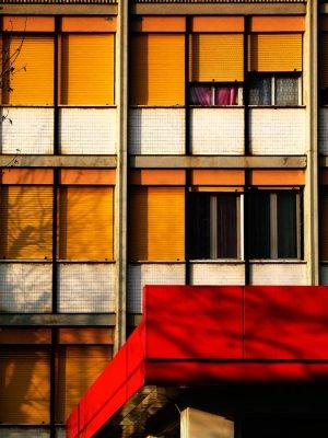 shadows & windows