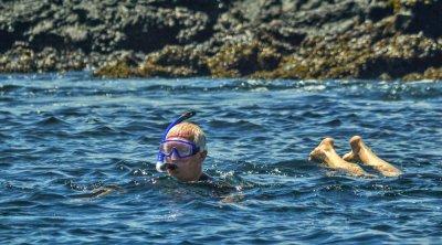 Snorkeling, Elizabeth Bay, Isabela Island, The Galapagos, Ecuador, 2012