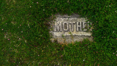 Remembering mother, Cayucos, California, 2012