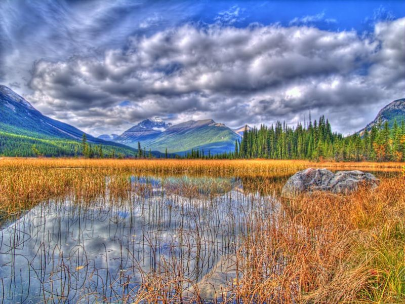 Rampart Ponds - Autumn
