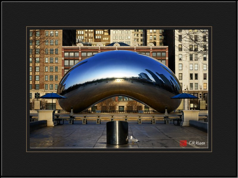 The Only Visitor to Cloud Gate