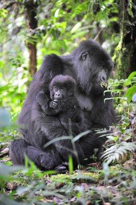 Hirwa Mom and Infant2 2011